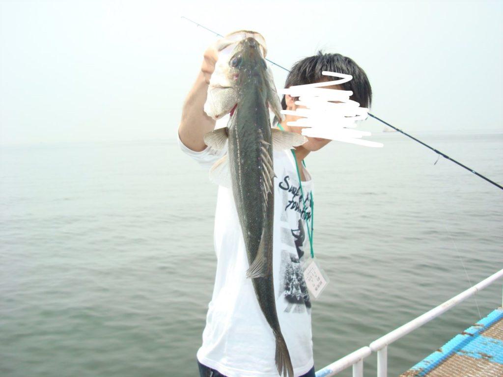 公園 海 釣り